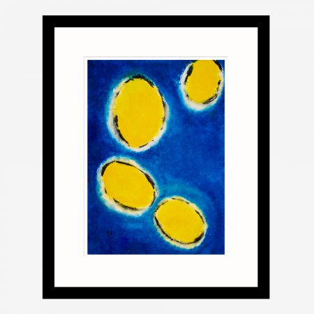 Happy-Cells-Navy-&-Yellow-2